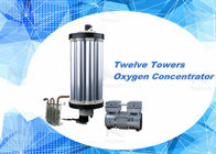 3L - 15L PSA Oxygen Concentrator Parts Oxygen Sieve For Aquaculture